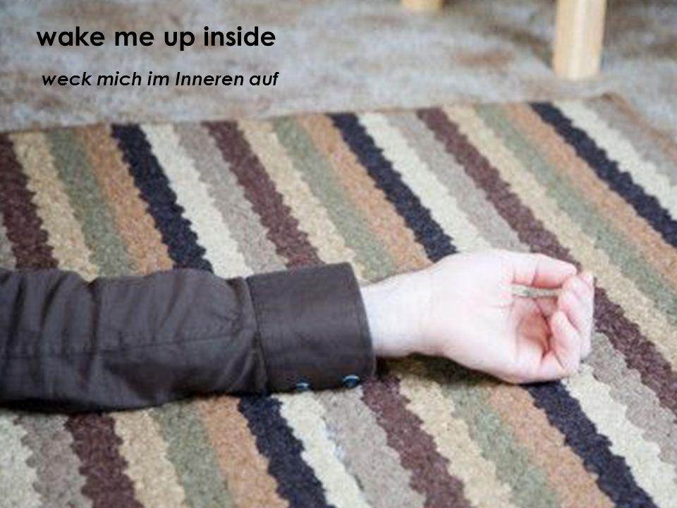weck mich im Inneren auf wake me up inside