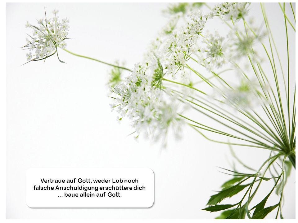 Vertraue auf Gott, weder Lob noch falsche Anschuldigung erschüttere dich... baue allein auf Gott.