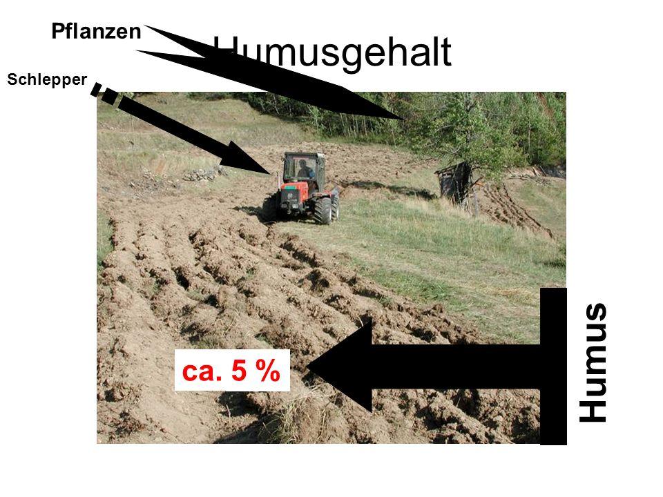 Humusgehalt Schlepper Pflanzen Humus 6 % 7 % ca. 5 %