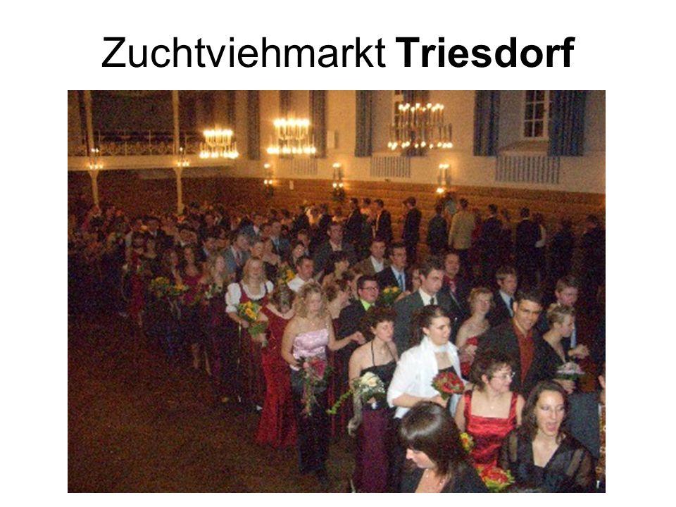 Zuchtviehmarkt Triesdorf