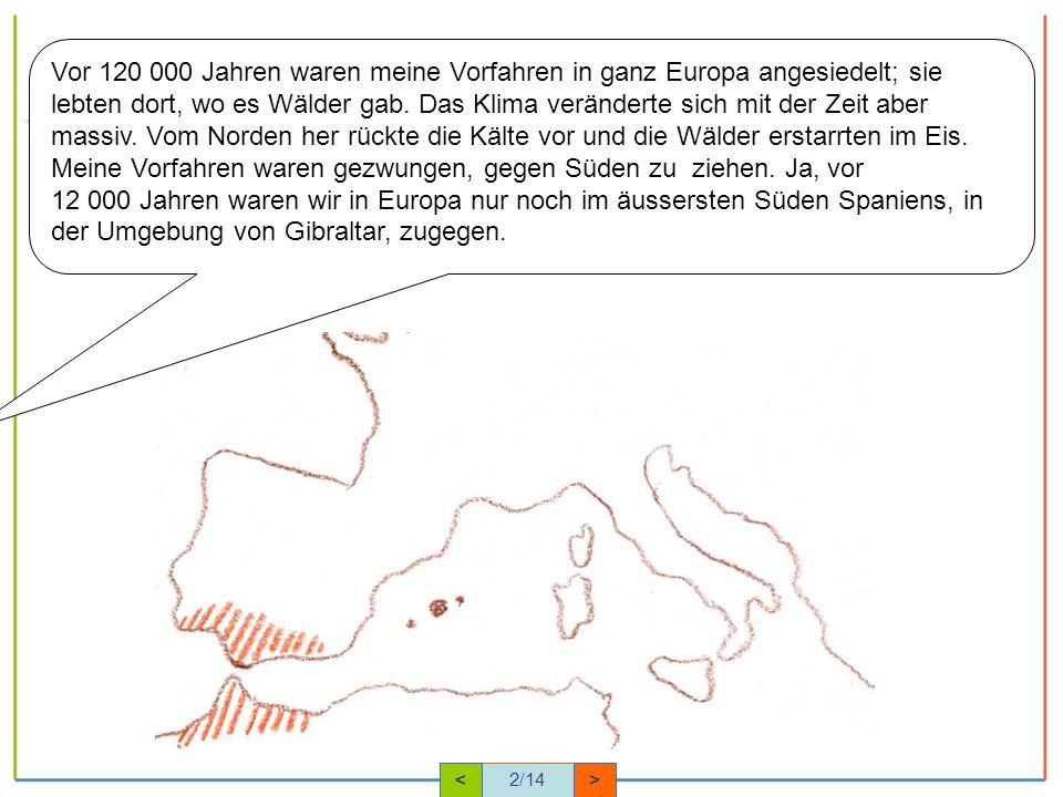 Vor 120 000 Jahren waren meine Vorfahren in ganz Europa angesiedelt; sie lebten dort, wo es Wälder gab.