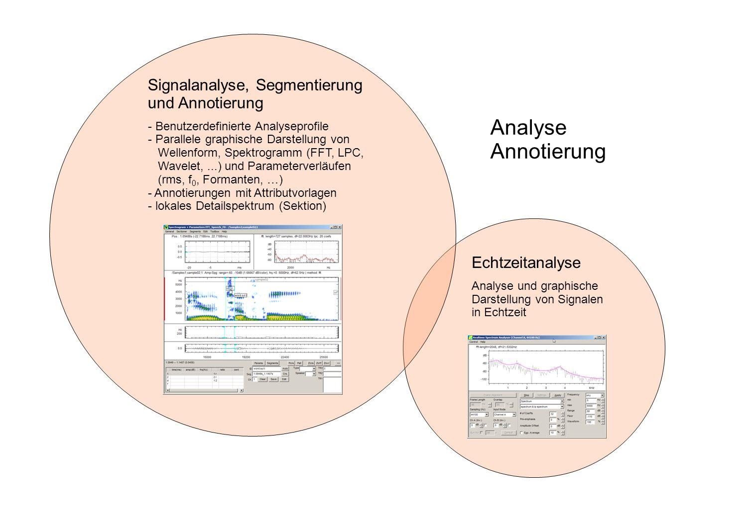 Echtzeitanalyse Analyse und graphische Darstellung von Signalen in Echtzeit Signalanalyse, Segmentierung und Annotierung - Benutzerdefinierte Analysep