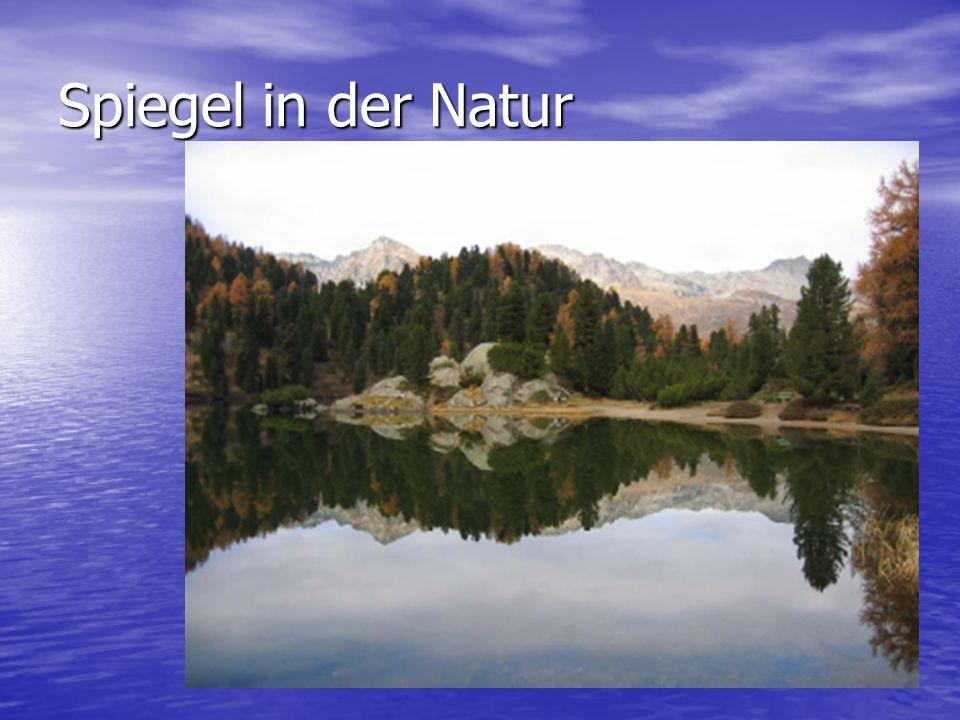 Spiegel in der Natur