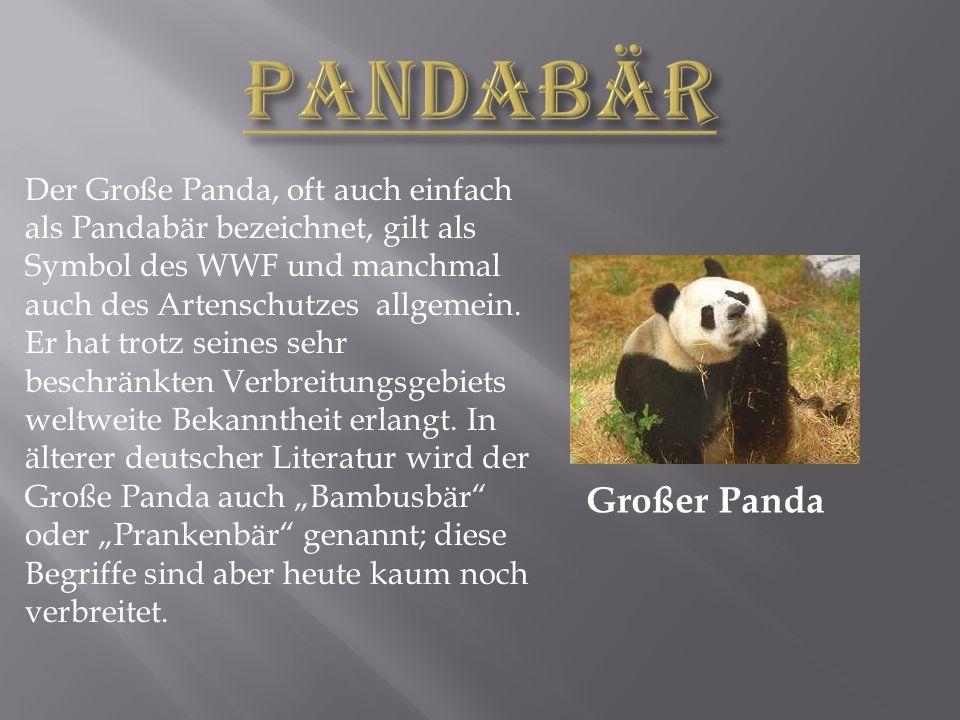 Großer Panda Der Große Panda, oft auch einfach als Pandabär bezeichnet, gilt als Symbol des WWF und manchmal auch des Artenschutzes allgemein.