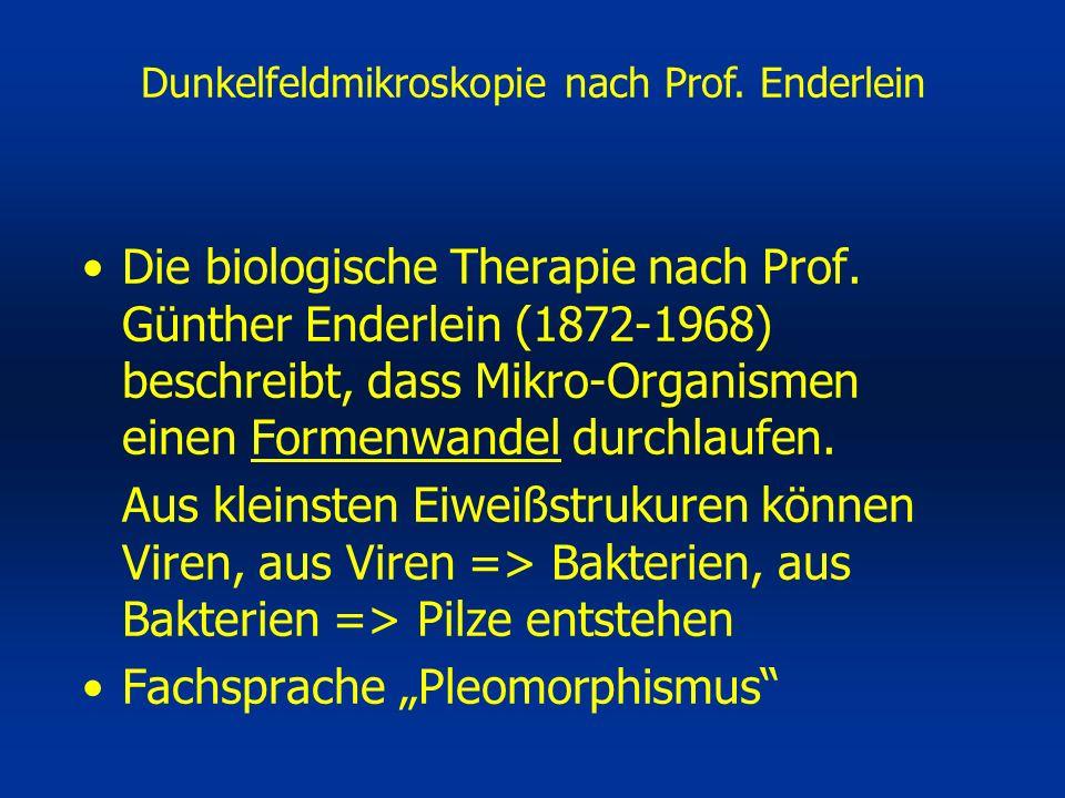 Die biologische Therapie nach Prof.
