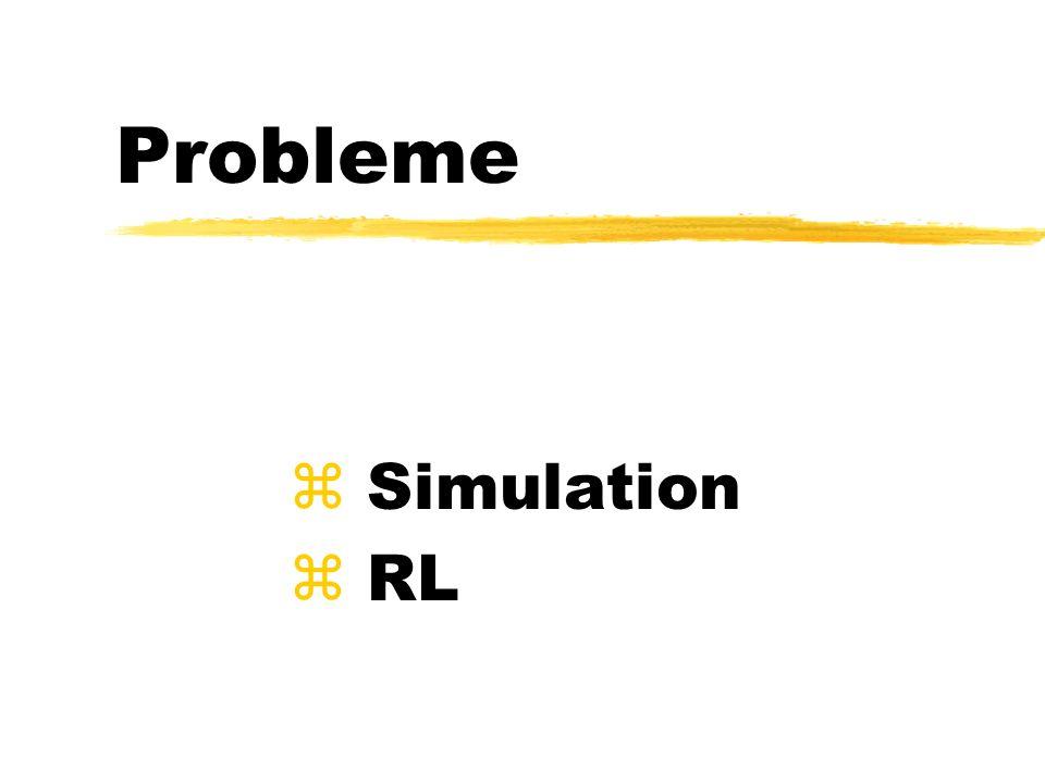 Probleme z Simulation z RL
