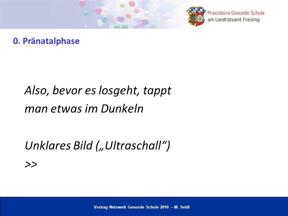 Vortrag Netzwerk Gesunde Schule 2010 – M. Seidl Also, bevor es losgeht, tappt man etwas im Dunkeln Unklares Bild (Ultraschall) >> 0. Pränatalphase