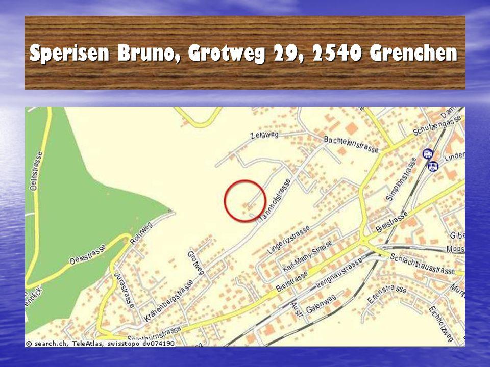Sperisen Bruno, Grotweg 29, 2540 Grenchen