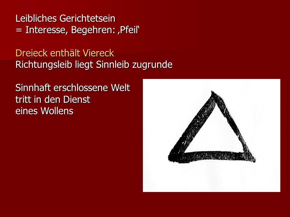 Leibliches Gerichtetsein = Interesse, Begehren: Pfeil Dreieck enthält Viereck Richtungsleib liegt Sinnleib zugrunde Sinnhaft erschlossene Welt tritt i