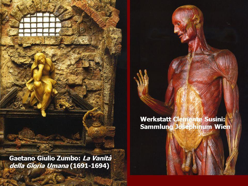 Gaetano Giulio Zumbo: La Vanità della Gloria Umana (1691-1694) Werkstatt Clemente Susini: Sammlung Josephinum Wien