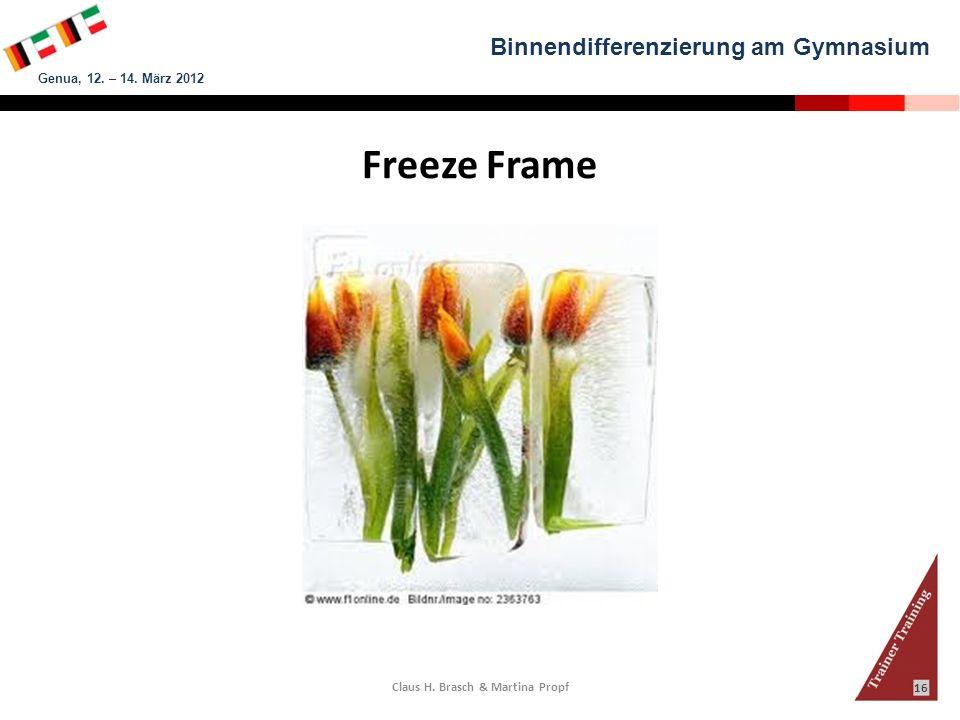 Binnendifferenzierung am Gymnasium Genua, 12. – 14. März 2012 Claus H. Brasch & Martina Propf 16 Freeze Frame