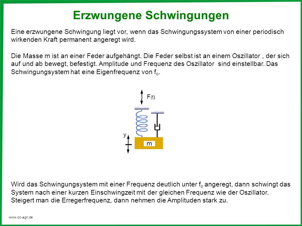 www.cc-agri.de Erzwungene Schwingungen Eine erzwungene Schwingung liegt vor, wenn das Schwingungssystem von einer periodisch wirkenden Kraft permanent
