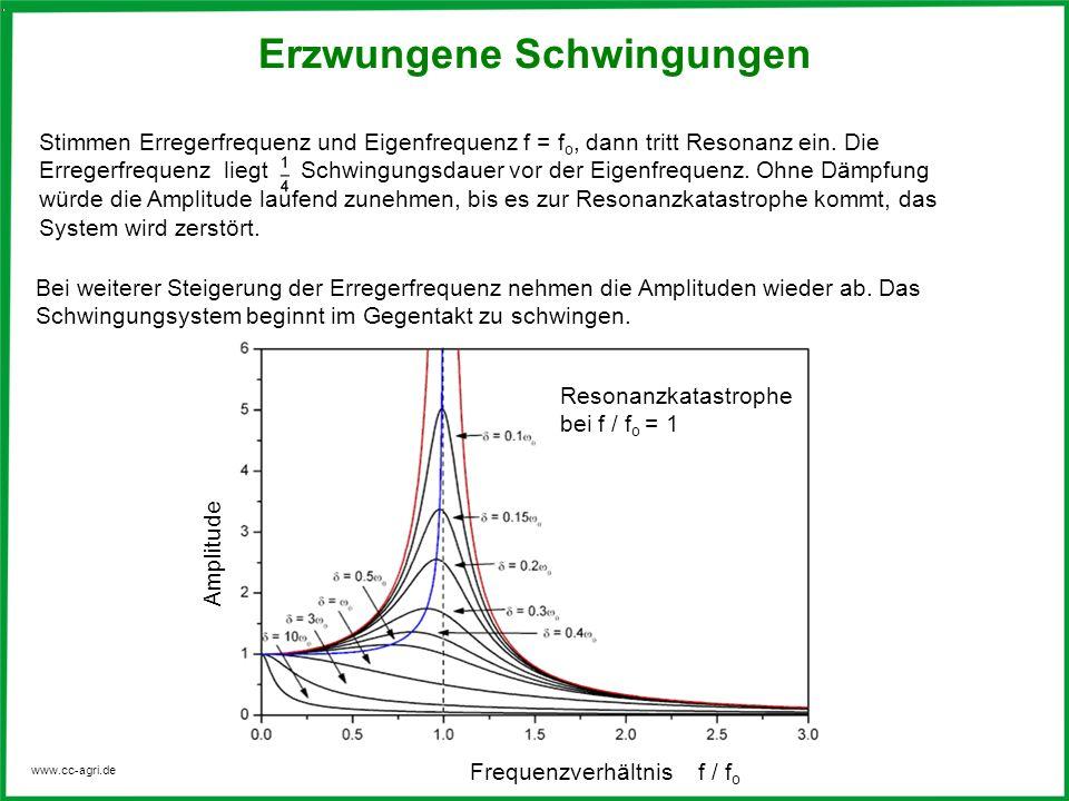 www.cc-agri.de Bei weiterer Steigerung der Erregerfrequenz nehmen die Amplituden wieder ab. Das Schwingungsystem beginnt im Gegentakt zu schwingen. Fr