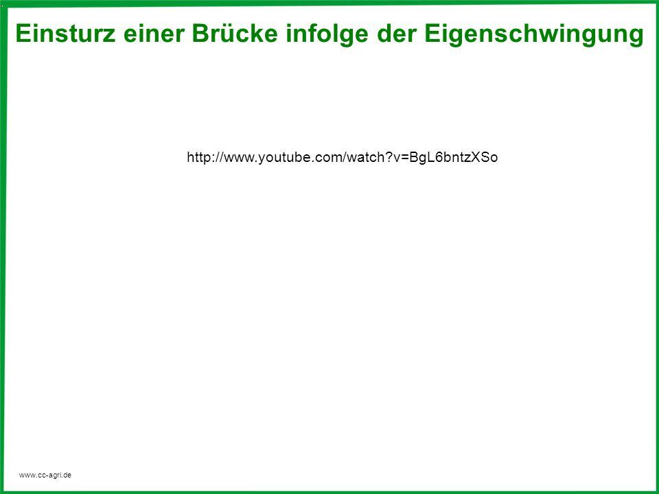 www.cc-agri.de Einsturz einer Brücke infolge der Eigenschwingung http://www.youtube.com/watch?v=BgL6bntzXSo
