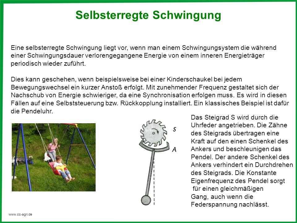 www.cc-agri.de Eine selbsterregte Schwingung liegt vor, wenn man einem Schwingungsystem die während einer Schwingungsdauer verlorengegangene Energie v