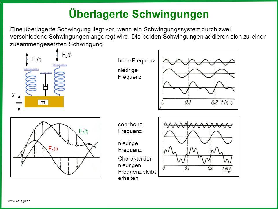 www.cc-agri.de Überlagerte Schwingungen Eine überlagerte Schwingung liegt vor, wenn ein Schwingungssystem durch zwei verschiedene Schwingungen angereg