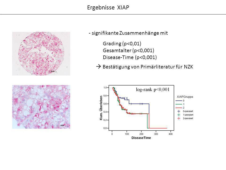 Ergebnisse XIAP - signifikante Zusammenhänge mit Bestätigung von Primärliteratur für NZK Grading (p<0,01) Gesamtalter (p<0,001) Disease-Time (p<0,001)