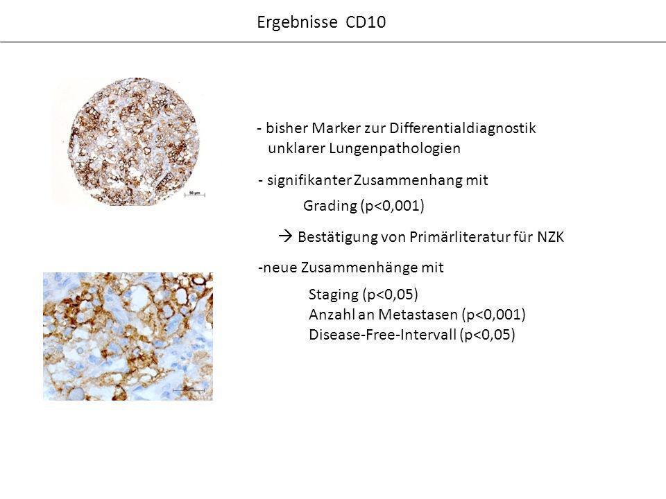 - bisher Marker zur Differentialdiagnostik unklarer Lungenpathologien Ergebnisse CD10 - signifikanter Zusammenhang mit Bestätigung von Primärliteratur