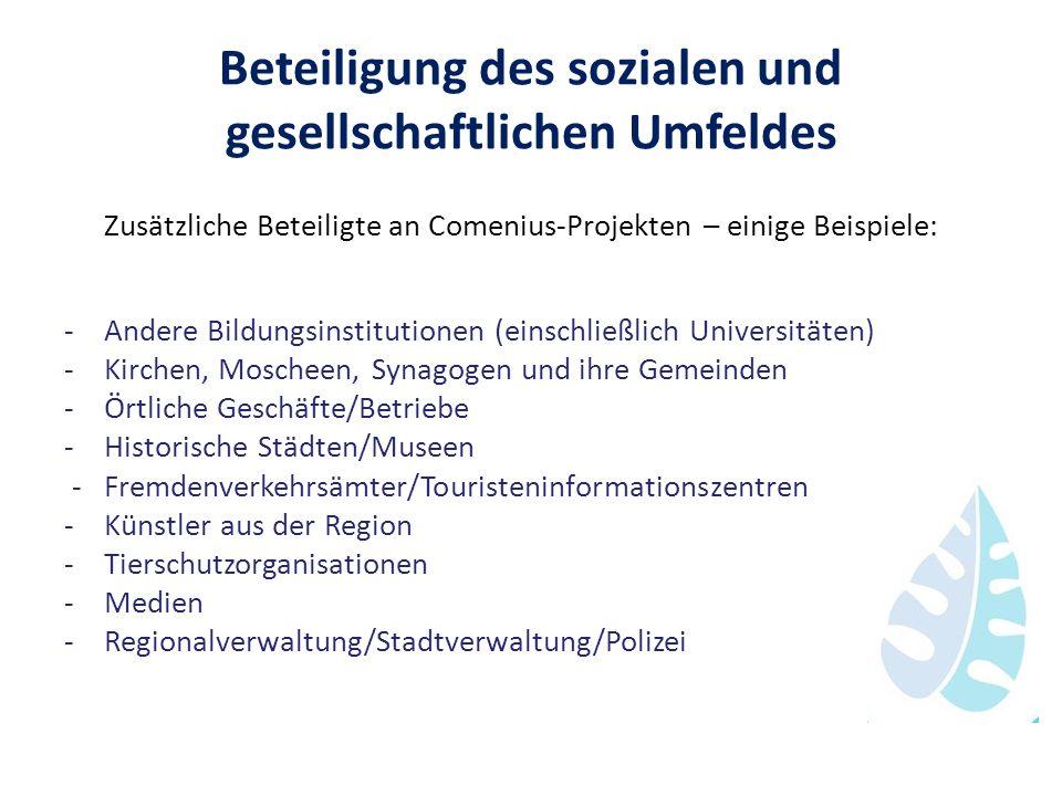 Beteiligung des sozialen und gesellschaftlichen Umfeldes Zusätzliche Beteiligte an Comenius-Projekten – einige Beispiele: -Andere Bildungsinstitutione