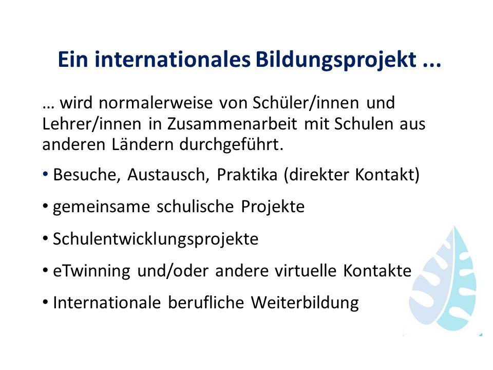 Ein internationales Bildungsprojekt... … wird normalerweise von Schüler/innen und Lehrer/innen in Zusammenarbeit mit Schulen aus anderen Ländern durch