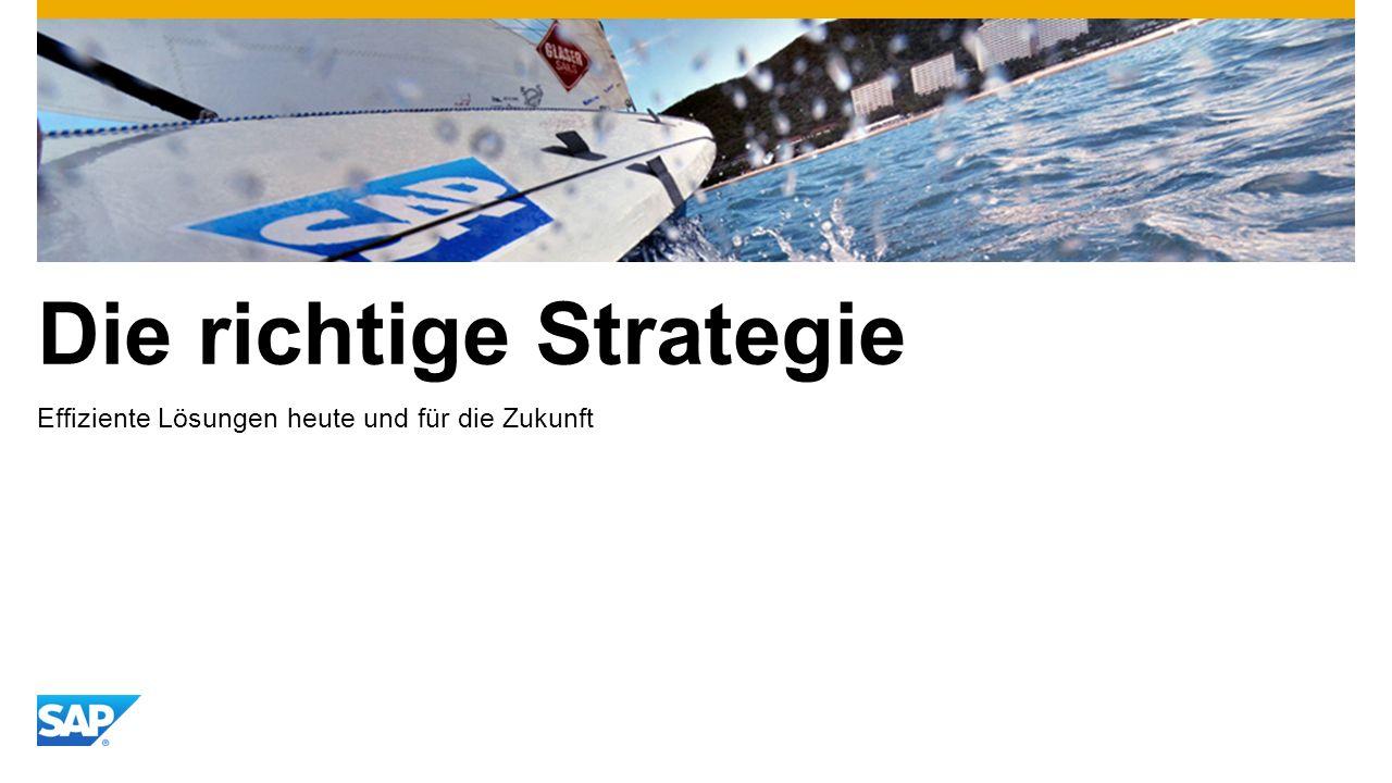 Die richtige Strategie Effiziente Lösungen heute und für die Zukunft