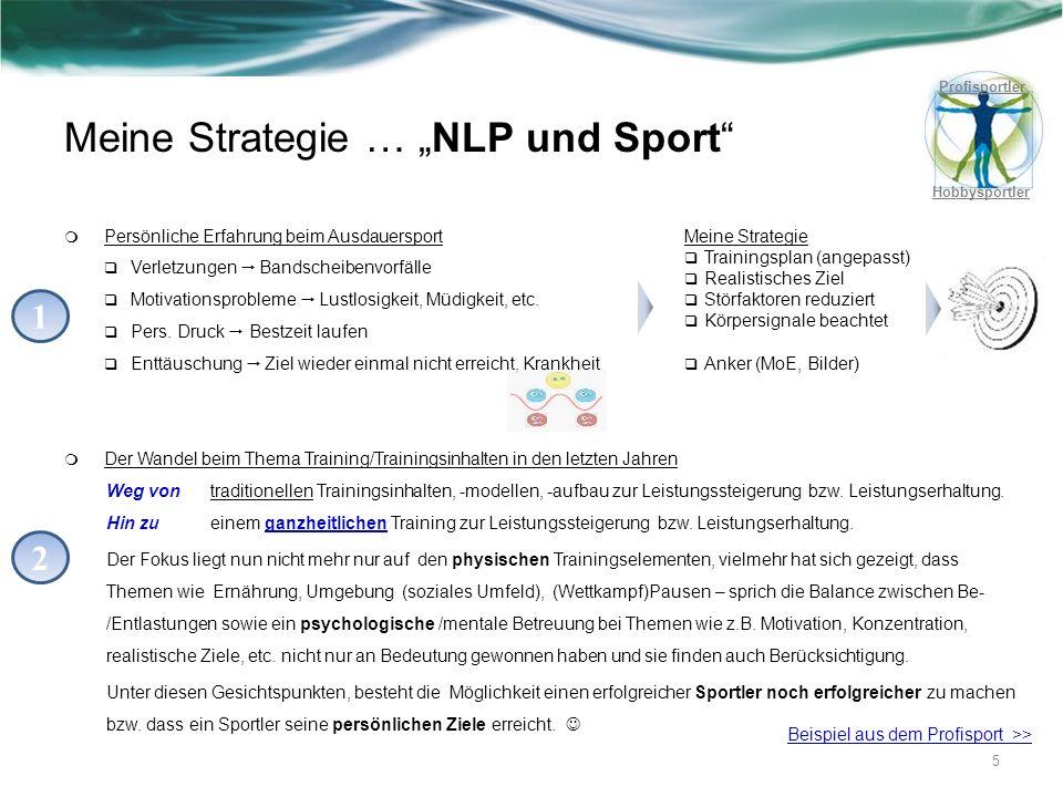 Meine Strategie … NLP und Sport Persönliche Erfahrung beim Ausdauersport Verletzungen Bandscheibenvorfälle Motivationsprobleme Lustlosigkeit, Müdigkei