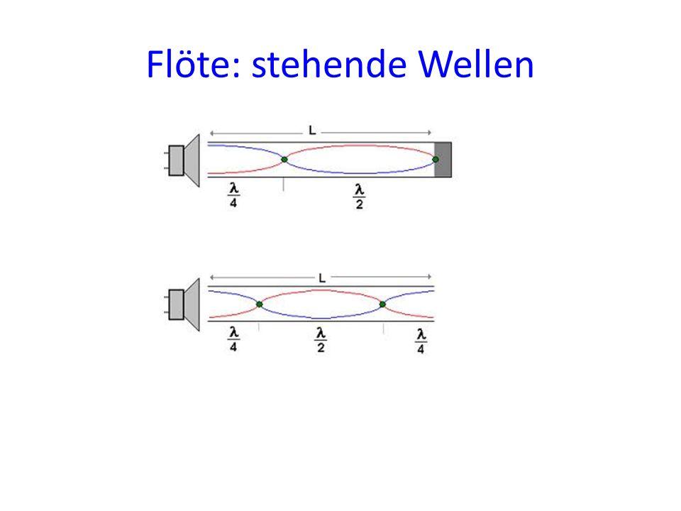 Flöte: stehende Wellen