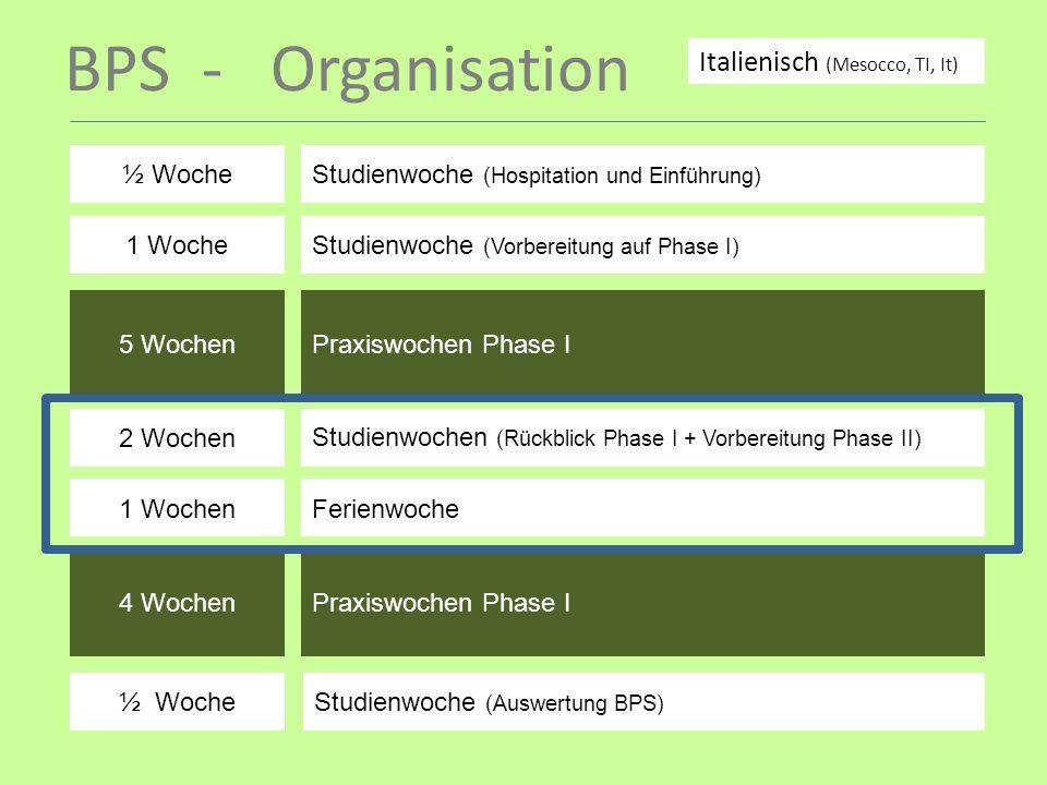 BPS - Organisation ½ WocheStudienwoche (Hospitation und Einführung) 1 WocheStudienwoche (Vorbereitung auf Phase I) 5 WochenPraxiswochen Phase I 2 Woch