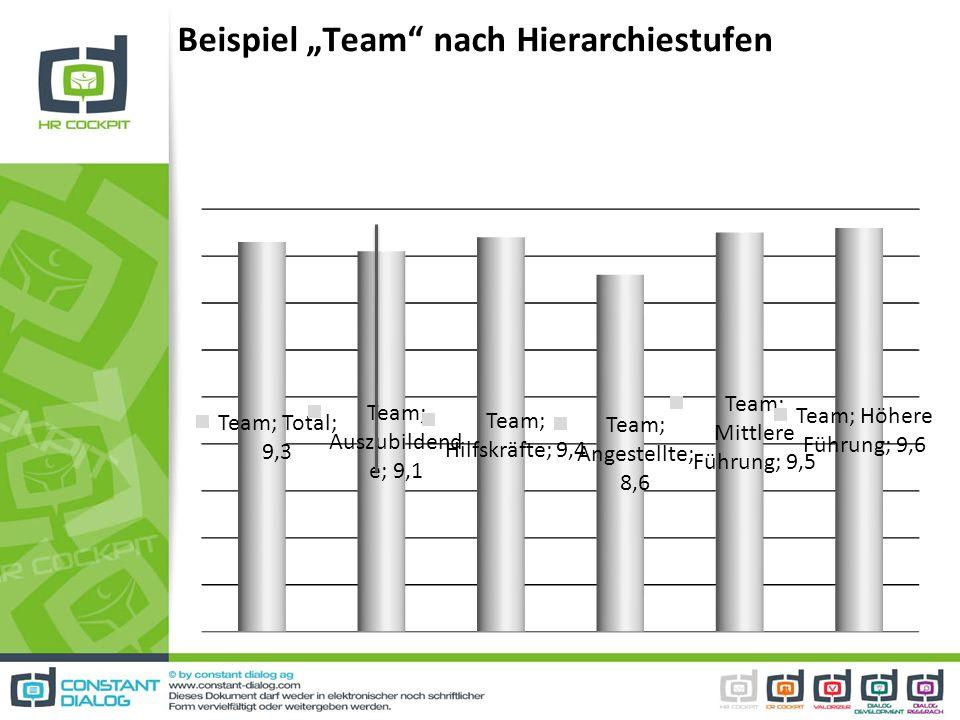 Beispiel Team nach Hierarchiestufen