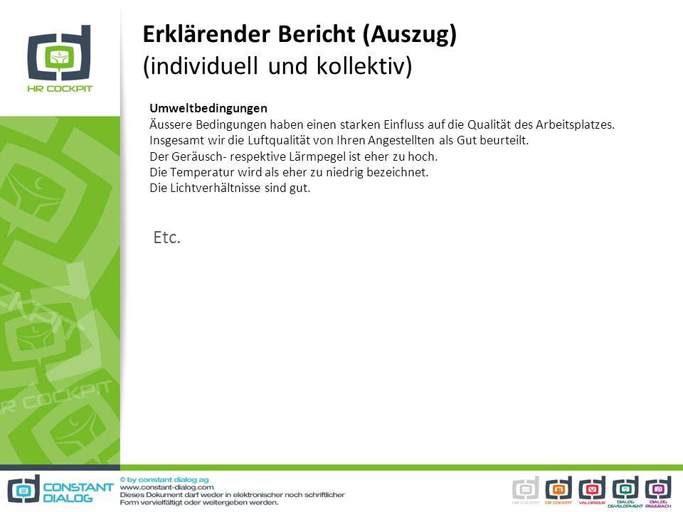 Erklärender Bericht (Auszug) (individuell und kollektiv) Umweltbedingungen Äussere Bedingungen haben einen starken Einfluss auf die Qualität des Arbei