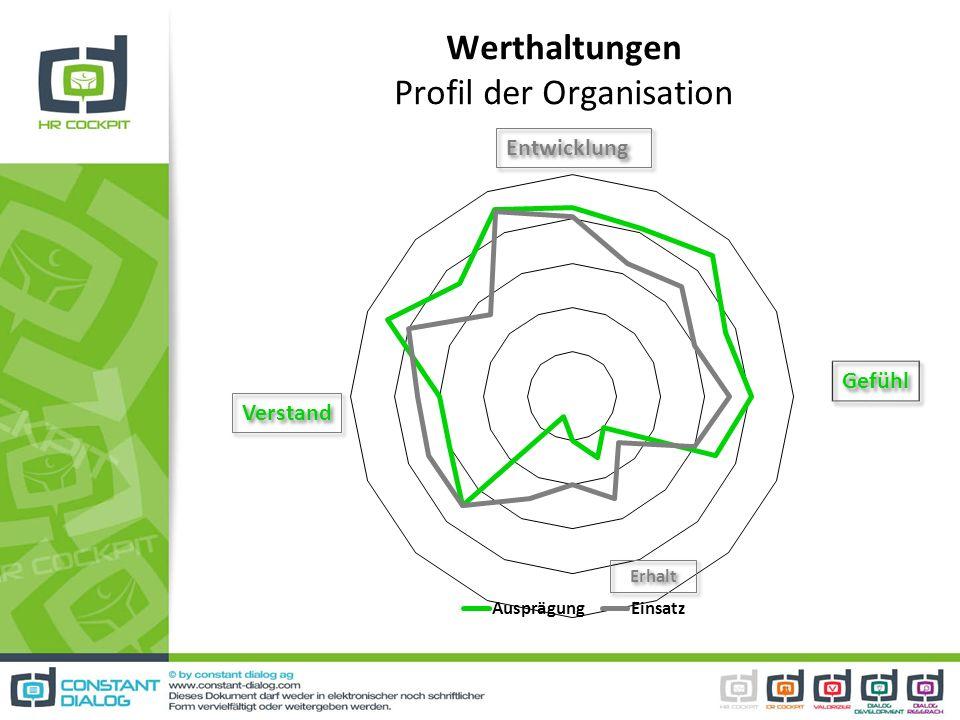 Werthaltungen Profil der Organisation Entwicklung Gefühl Verstand Erhalt