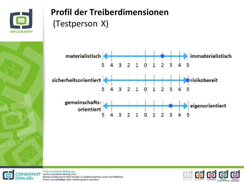 Profil der Treiberdimensionen (Testperson X)