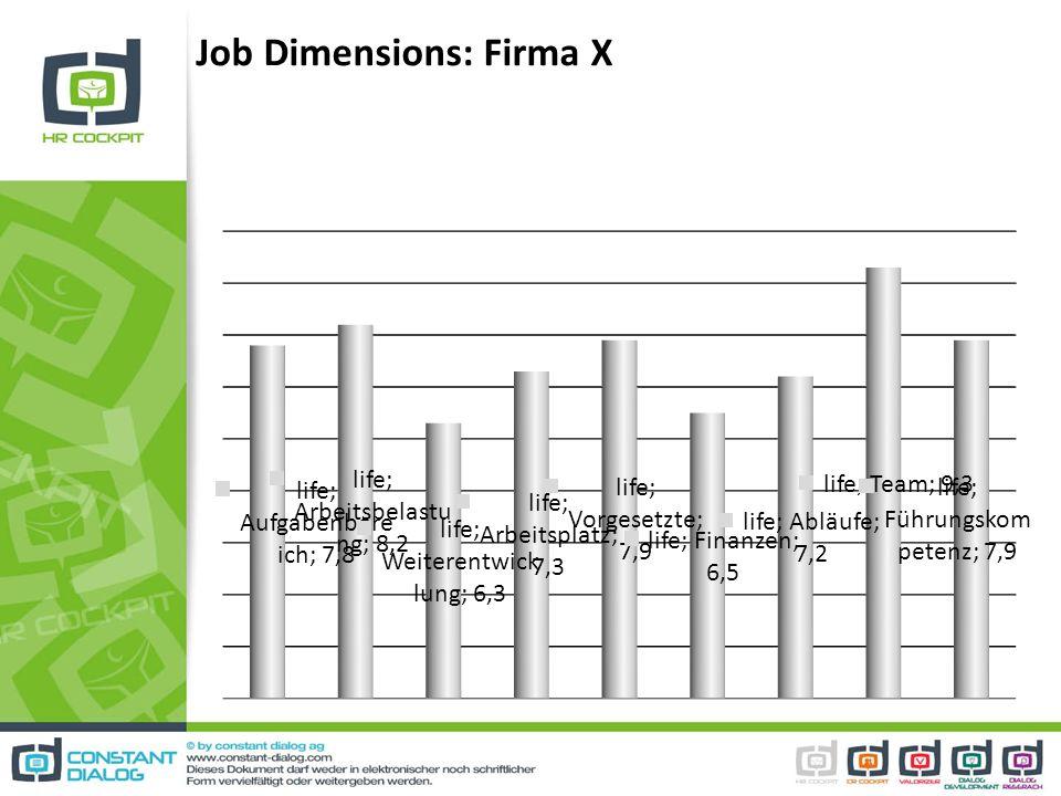 Job Dimensions: Firma X