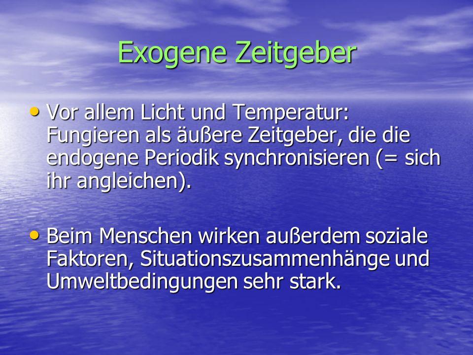 Exogene Zeitgeber Vor allem Licht und Temperatur: Fungieren als äußere Zeitgeber, die die endogene Periodik synchronisieren (= sich ihr angleichen). V