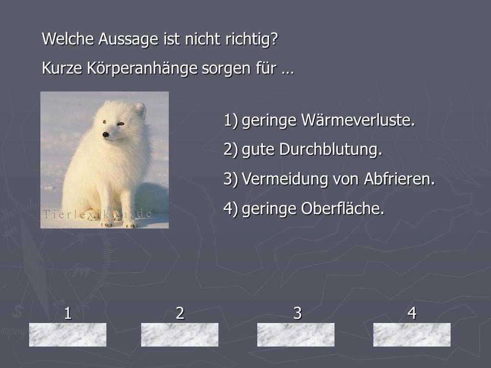 1234 Welche Aussage ist nicht richtig? Kurze Körperanhänge sorgen für … 1)geringe Wärmeverluste. 2)gute Durchblutung. 3)Vermeidung von Abfrieren. 4)ge