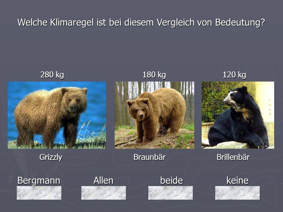 BergmannAllenbeidekeine 280 kg 180 kg 120 kg 280 kg 180 kg 120 kg Grizzly Braunbär Brillenbär Grizzly Braunbär Brillenbär Welche Klimaregel ist bei di