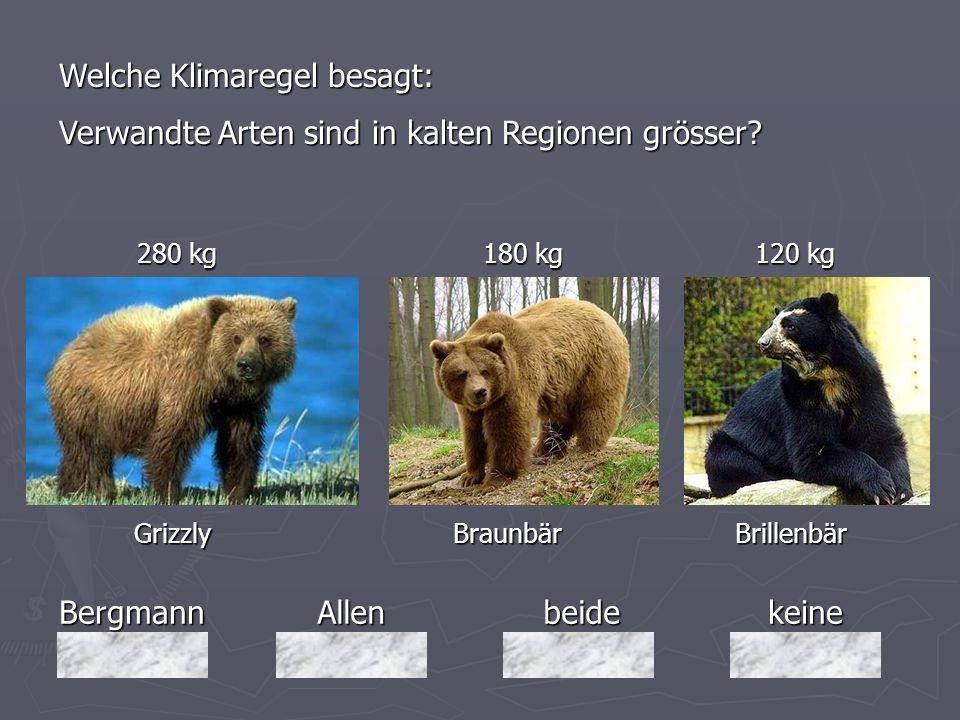 BergmannAllenbeidekeine 280 kg 180 kg 120 kg 280 kg 180 kg 120 kg Grizzly Braunbär Brillenbär Grizzly Braunbär Brillenbär Welche Klimaregel besagt: Ve