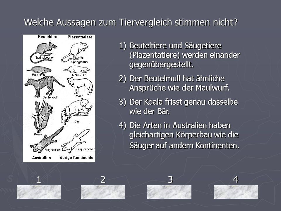 1234 Welche Aussagen zum Tiervergleich stimmen nicht? 1)Beuteltiere und Säugetiere (Plazentatiere) werden einander gegenübergestellt. 2)Der Beutelmull
