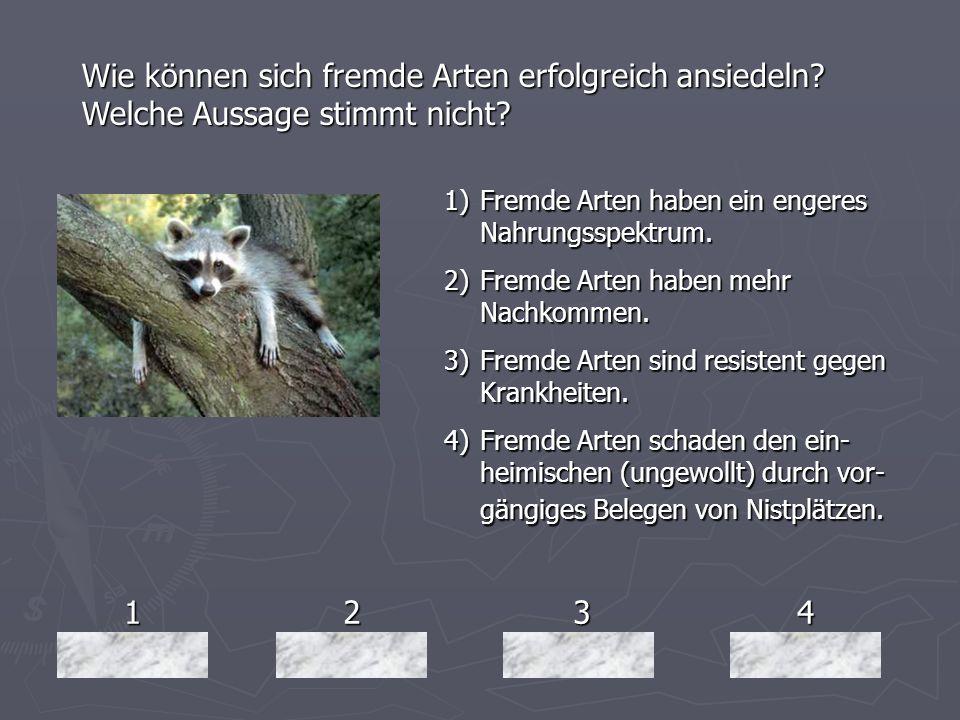 1234 Wie können sich fremde Arten erfolgreich ansiedeln? Welche Aussage stimmt nicht? 1)Fremde Arten haben ein engeres Nahrungsspektrum. 2)Fremde Arte