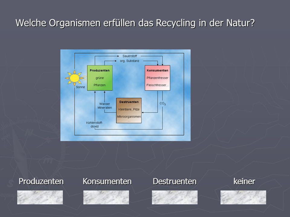 Produzenten Welche Organismen erfüllen das Recycling in der Natur? keiner Destruenten DestruentenKonsumenten