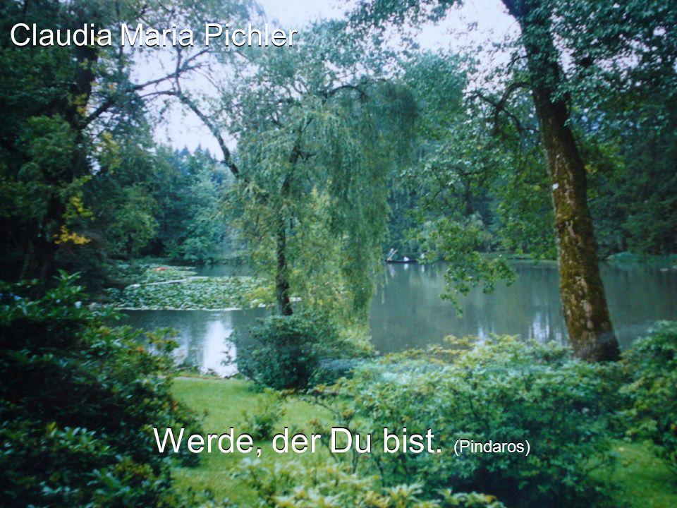 Claudia Maria Pichler Werde, der Du bist. (Pindaros)