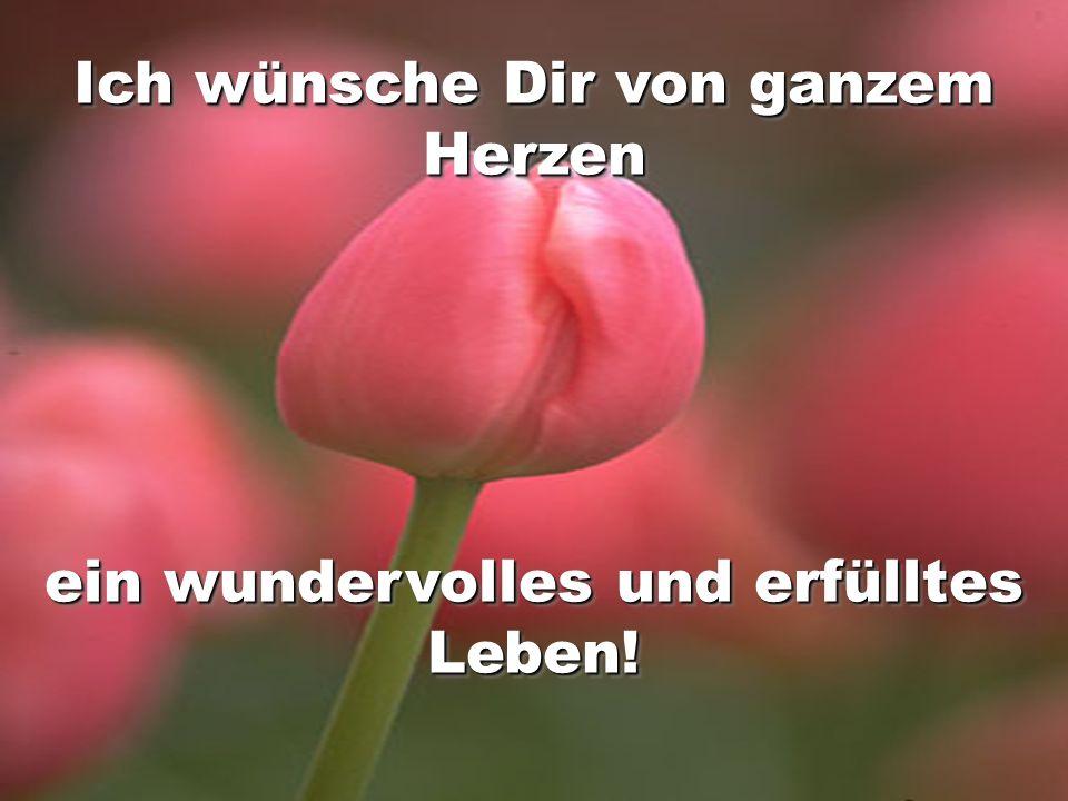 Ich wünsche Dir von ganzem Herzen ein wundervolles und erfülltes Leben! Ich wünsche Dir von ganzem Herzen ein wundervolles und erfülltes Leben!