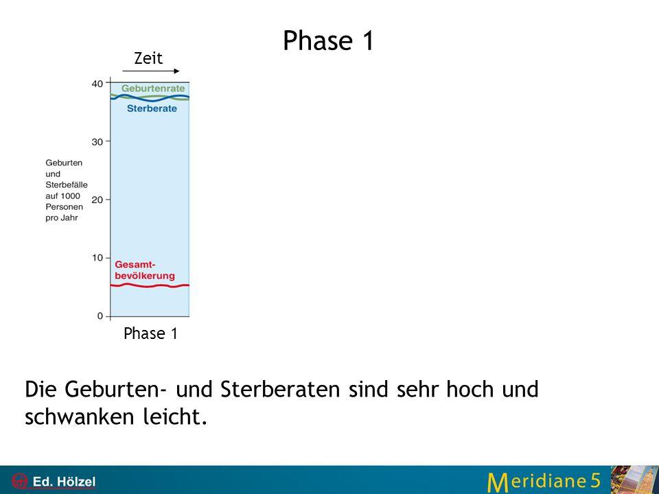 Phase 1 Die Geburten- und Sterberaten sind sehr hoch und schwanken leicht. Phase 1 Zeit