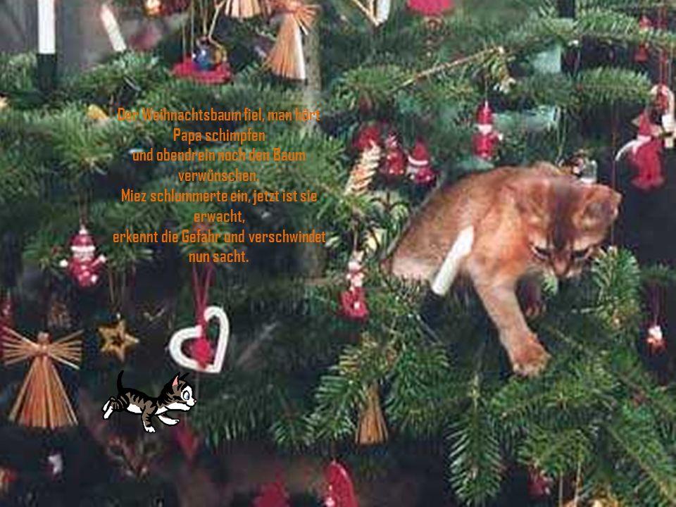 Von Ferne schallt rüber der Glockenklang, im Radio hört man nen Weihnachtsgesang, es ist das Lied der Stillen Nacht - doch da hat was im Wohnzimmer furchtbar gekracht.
