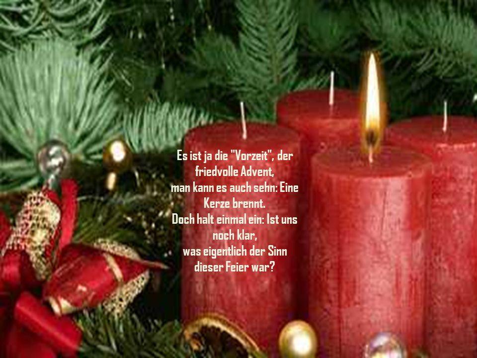 Der Weihnachtsbaum fiel, man hört Papa schimpfen und obendrein noch den Baum verwünschen. Miez schlummerte ein, jetzt ist sie erwacht, erkennt die Gef