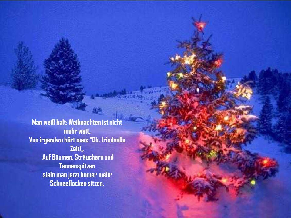 Es bläst der Wind, es friert, es schneit, man merkt es schnell: Es adventet die Zeit. Über Wald und Flur legen sich weiße Decken, die Autos fahren nun
