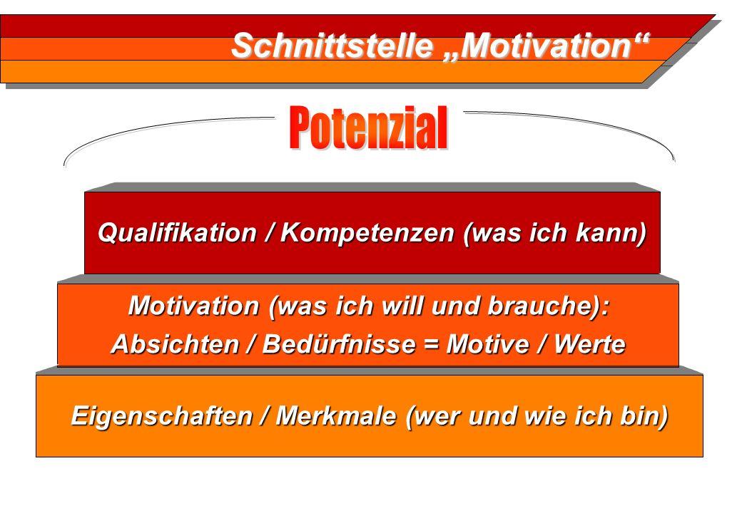 Schnittstelle Motivation Motivation (was ich will und brauche): Absichten / Bedürfnisse = Motive / Werte Motivation (was ich will und brauche): Absich