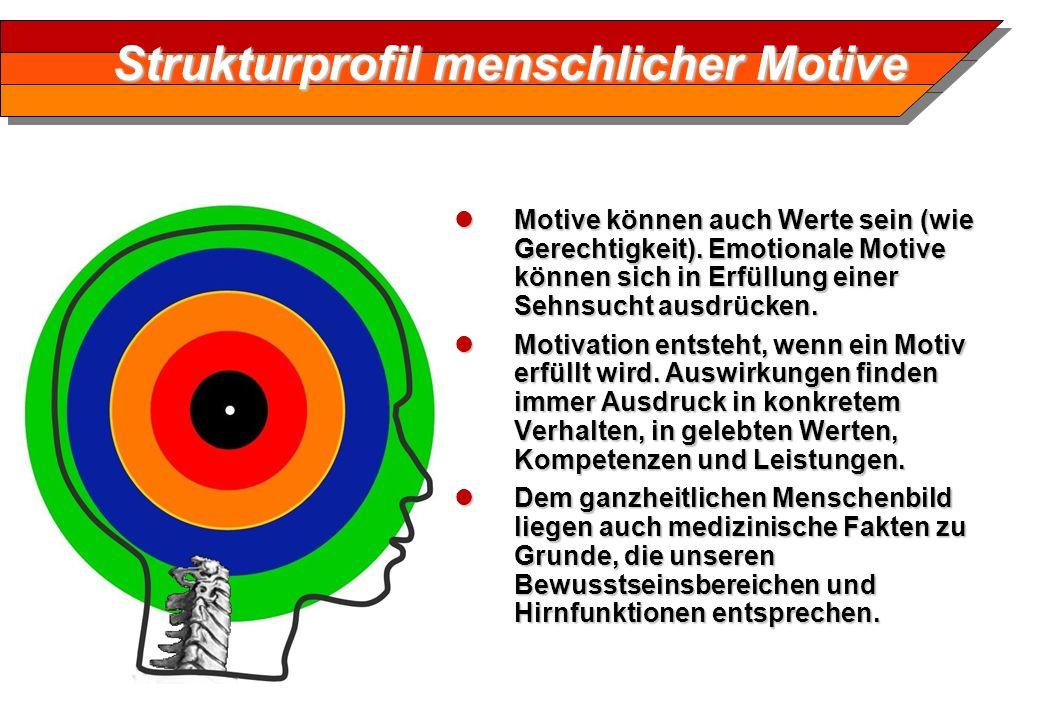 Strukturprofil menschlicher Motive Motive können auch Werte sein (wie Gerechtigkeit). Emotionale Motive können sich in Erfüllung einer Sehnsucht ausdr