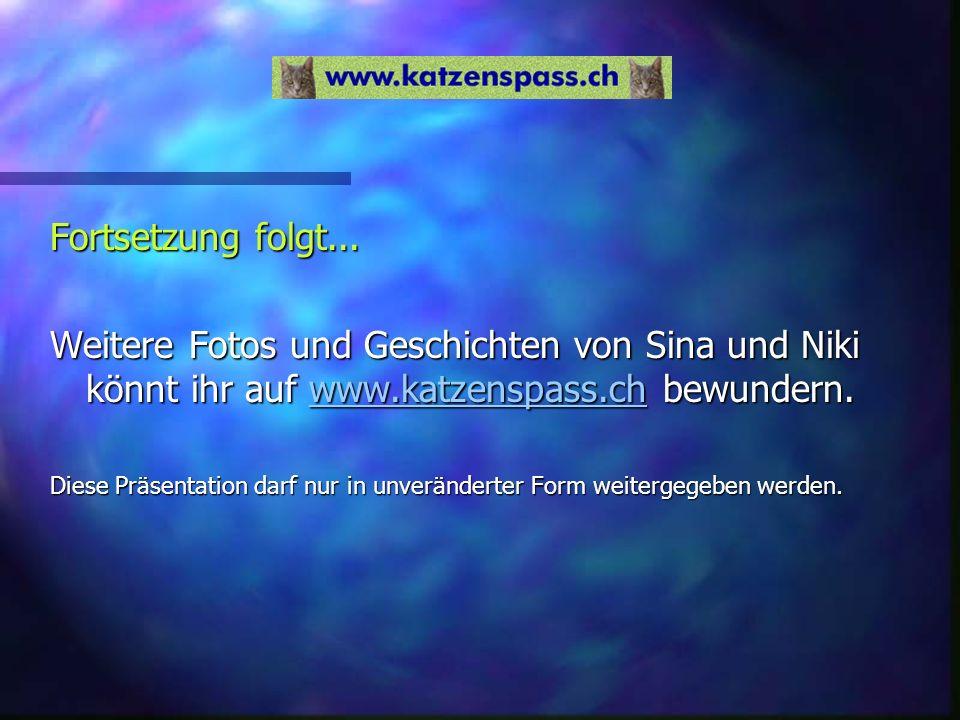 Fortsetzung folgt... Weitere Fotos und Geschichten von Sina und Niki könnt ihr auf www.katzenspass.ch bewundern.www.katzenspass.ch Diese Präsentation