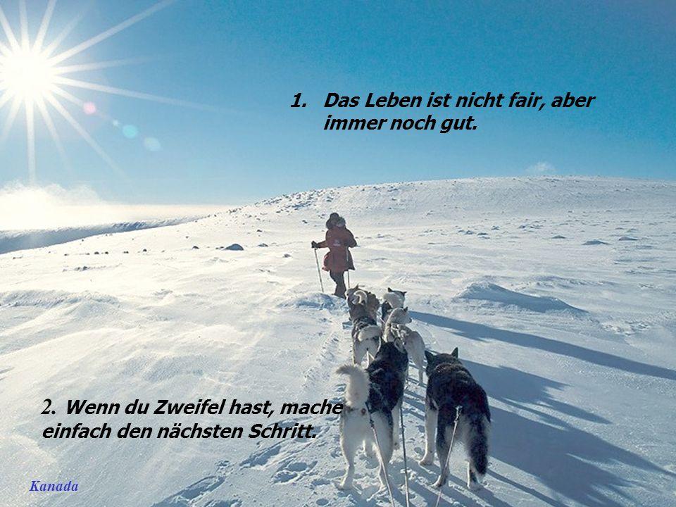 Norvegija – Šiaurės pašvaistė 45 Lebensweisheiten Nov 2009 He YanMusic: snowdream